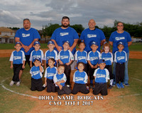 Holy Name Bobcats TBall 2017