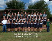 OMS Cross Country 2016