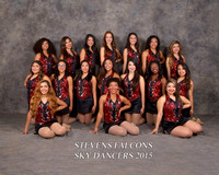 SHS Dance Team