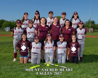 MSH Softball 2017