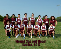 MSH Cross Country 2017
